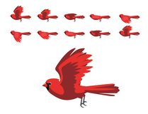 Free Scarlet Cardinal Flying Animation Cute Cartoon Vector Illustration Stock Photo - 160712510