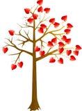 Scarlet hearts tree Royalty Free Stock Photos