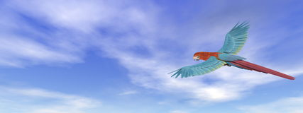 Scarlet macaw, parrot, flying - 3D render. Scarlet macaw, parrot, flying flying in blue sky - 3D render Royalty Free Stock Photos