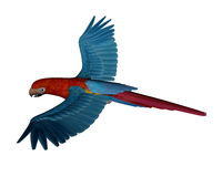 Scarlet macaw, parrot, flying - 3D render Royalty Free Stock Image