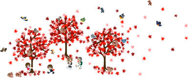Scarlet maple Royalty Free Stock Images