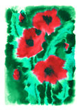 Scarlet poppies on a green background. Scarlet poppies painted in watercolor technique on a green background Royalty Free Stock Photo