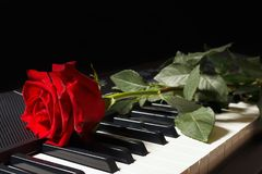 Scarlet rose on keyboard of the electronic synthesizer on black background Royalty Free Stock Photography