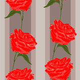 Scarlet  roses Stock Photography