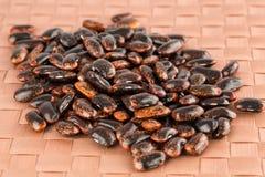 Scarlet runner beans stock images