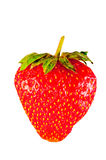 Scarlet strawberries Stock Images