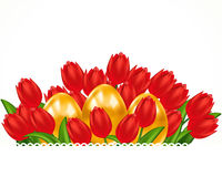 Scarlet tulips and Easter eggs. Easter card. Stock Photography