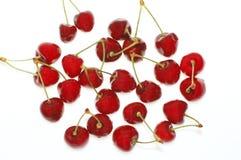 scarlet wiśniowy obrazy stock