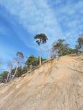 Scarp on Baltic sea coast, Lithuania Stock Images