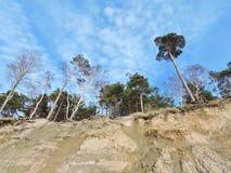 Scarp on Baltic sea coast, Lithuania Stock Photo