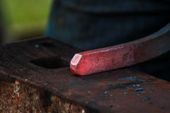 Scarpa del cavallo che è elaborata dal fabbro/maniscalco Fotografia Stock Libera da Diritti