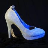Scarpa femminile dei tacchi alti Fotografia Stock