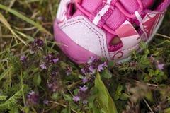 Scarpa rosa del bambino sui fiori rosa Fotografia Stock