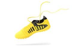 scarpe Immagine Stock Libera da Diritti