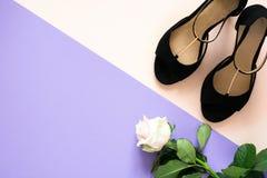 Scarpe classiche alla moda dei sandali del cuoio del ` s delle donne di colore con i tacchi alti di su fondo di carta colorato mu Immagini Stock