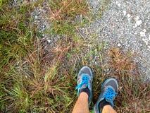 Scarpe da corsa, sport, addestramento o allenamento Fotografie Stock Libere da Diritti