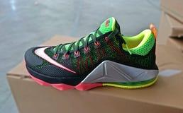 Scarpe da tennis di pallacanestro di Nike Fotografia Stock Libera da Diritti