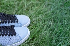Scarpe da tennis di pelle scamosciata blu sul prato inglese nel parco fotografia stock libera da diritti