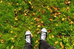 Scarpe da tennis e foglie su erba Fotografia Stock