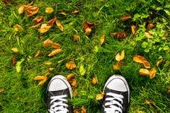 Scarpe da tennis e foglie su erba Fotografia Stock Libera da Diritti