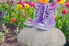 Scarpe da tennis porpora nel giardino del tulipano Fotografia Stock Libera da Diritti