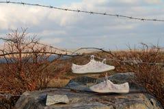 Scarpe da tennis su cavo Fotografie Stock Libere da Diritti