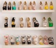 Scarpe del lusso delle donne Fotografia Stock