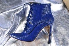 Scarpe del ` s delle donne eleganti Fotografia Stock