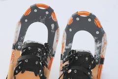 Scarpe della neve Fotografia Stock Libera da Diritti