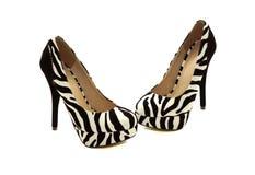 Scarpe della zebra con i talloni neri fotografie stock