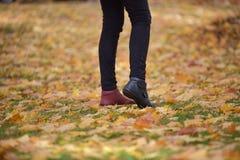 Scarpe delle gambe dei colori differenti Immagine Stock Libera da Diritti