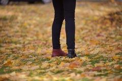 Scarpe delle gambe dei colori differenti Fotografia Stock
