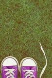 Scarpe delle scarpe da tennis del piccolo bambino Fotografia Stock
