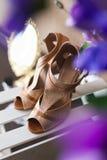 Scarpe delle spose Immagini Stock