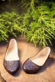 Scarpe di balletto comode, snakeskin, scarpe delle signore in natura Fotografie Stock