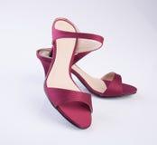 scarpe di colore rosso della donna o della scarpa su fondo Immagini Stock Libere da Diritti