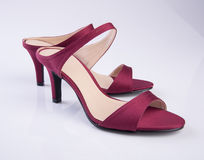 scarpe di colore rosso della donna o della scarpa su fondo Fotografia Stock Libera da Diritti