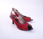 scarpe di colore rosso della donna o della scarpa su fondo Immagine Stock Libera da Diritti