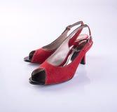 scarpe di colore rosso della donna o della scarpa su fondo Fotografie Stock Libere da Diritti