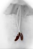 Scarpe di dito del piede rosse Fotografia Stock