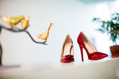 Scarpe di nozze Immagini Stock
