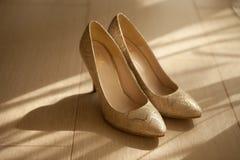 Scarpe di sarchiatura Fotografia Stock Libera da Diritti