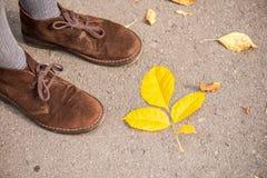 Scarpe e foglie di autunno Fotografia Stock