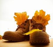 Scarpe e foglie di autunno Immagine Stock