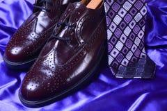 Scarpe & legame di Brown Fotografia Stock