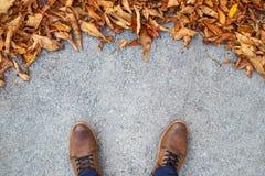 Scarpe maschii sulla via con le foglie Immagini Stock Libere da Diritti