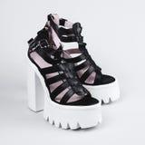 Scarpe nere femminili sopra bianco Immagini Stock Libere da Diritti