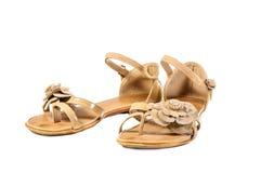 Scarpe, paia delle scarpe femminili Immagini Stock Libere da Diritti