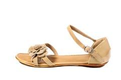 Scarpe, paia delle scarpe femminili Immagini Stock