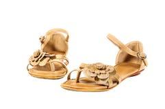 Scarpe, paia delle scarpe femminili isolate Fotografie Stock Libere da Diritti